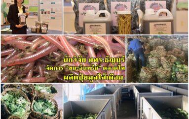 """นักวิจัย มทร.ธัญบุรี จัดการ""""ขยะอินทรีย์""""ตลาดไท ผลิตปุ๋ยมูลไส้เดือน"""